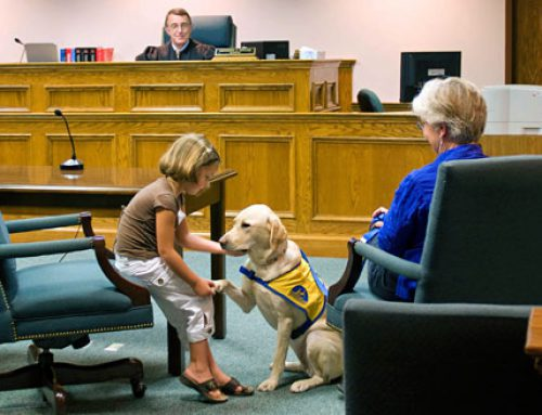 COURTHOUSE DOGS – IMPROVING THE JUSTICE SYSTEM